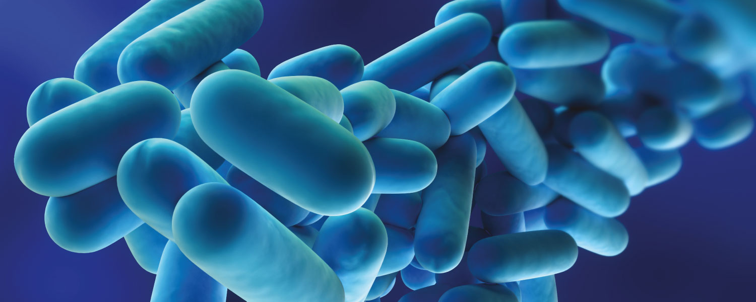 Legionella And Warm Water Systems A G Coombs